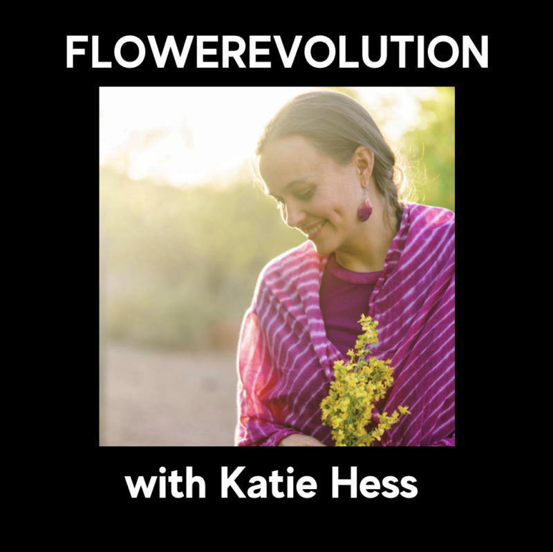 Katie Hess - FlowerEvolution