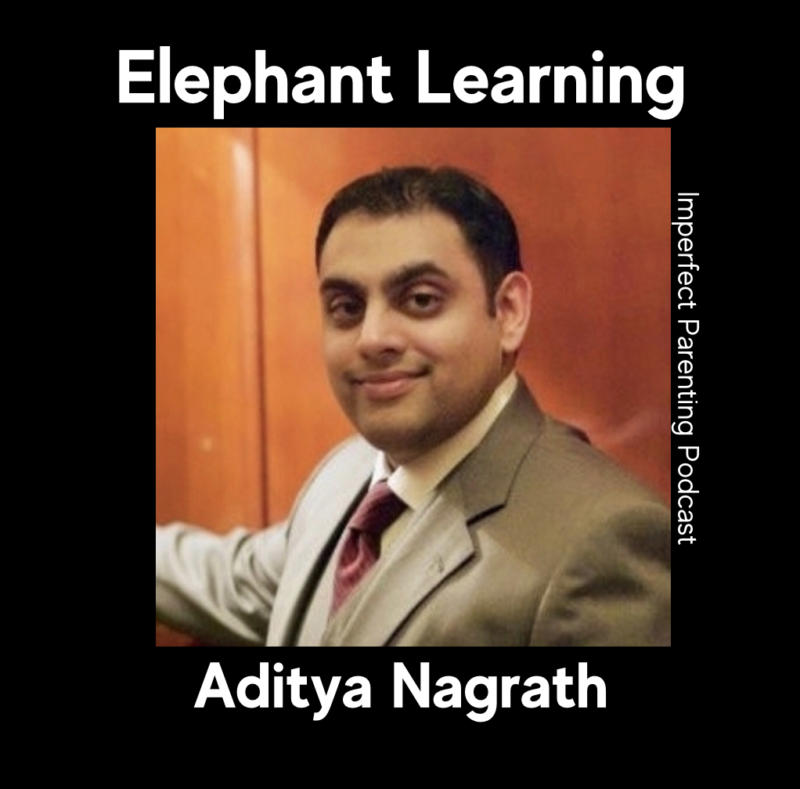 Elephant Learning -Aditya Nagrath